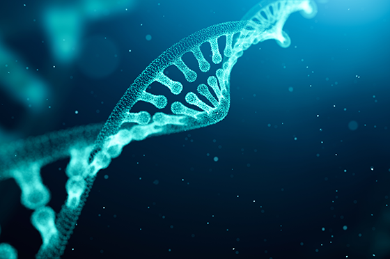 CRISPR Generated Models: The importance of considering model applications during design phases and the downstream services required for successful studies